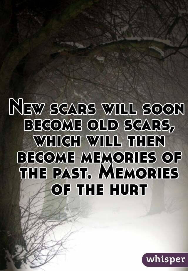 New scars will soon become old scars, which will then become memories of the past. Memories of the hurt