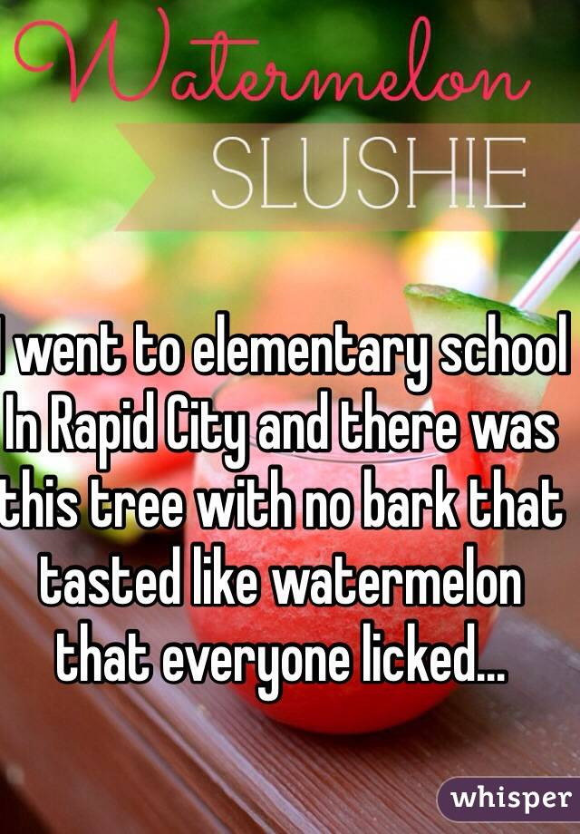 I went to elementary school In Rapid City and there was this tree with no bark that tasted like watermelon that everyone licked...
