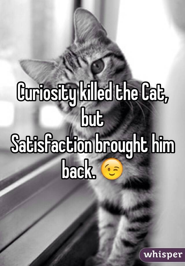 Curiosity killed the Cat, but  Satisfaction brought him back. 😉