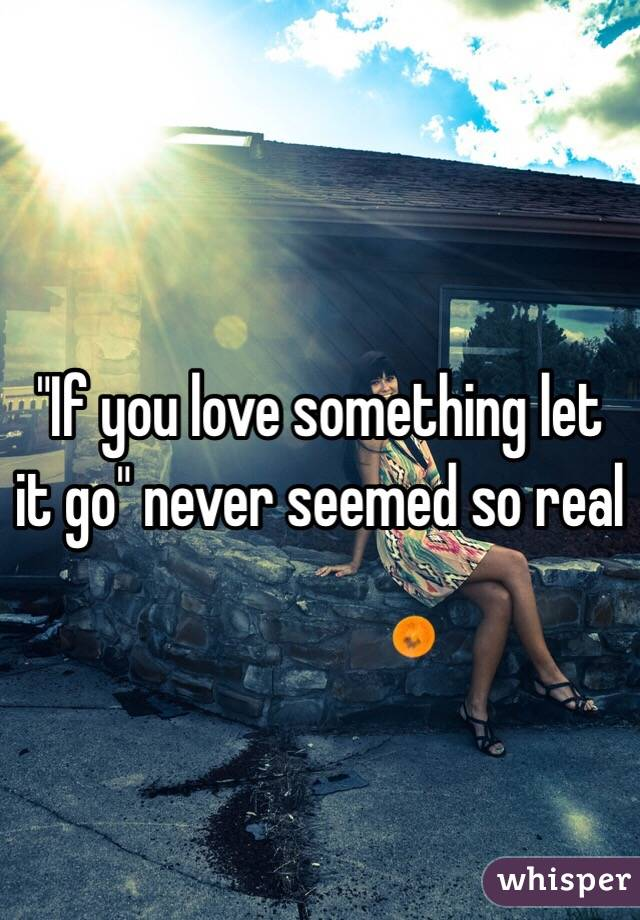"""""""If you love something let it go"""" never seemed so real"""