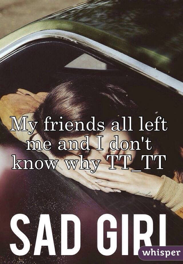 My friends all left me and I don't know why TT_TT