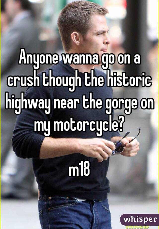 Anyone wanna go on a crush though the historic highway near the gorge on my motorcycle?  m18
