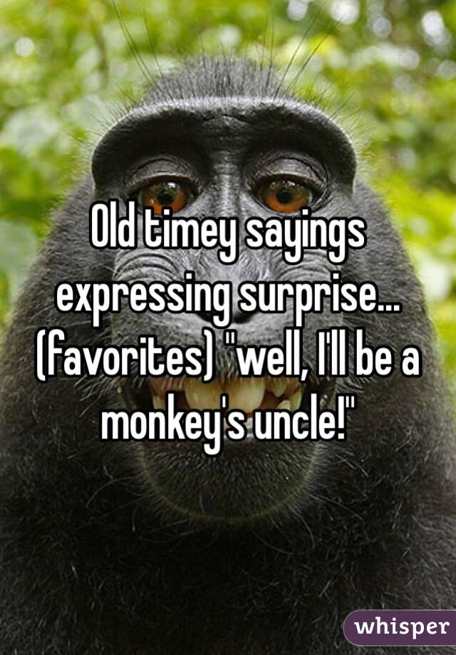 """Old timey sayings expressing surprise...(favorites) """"well, I'll be a monkey's uncle!"""""""