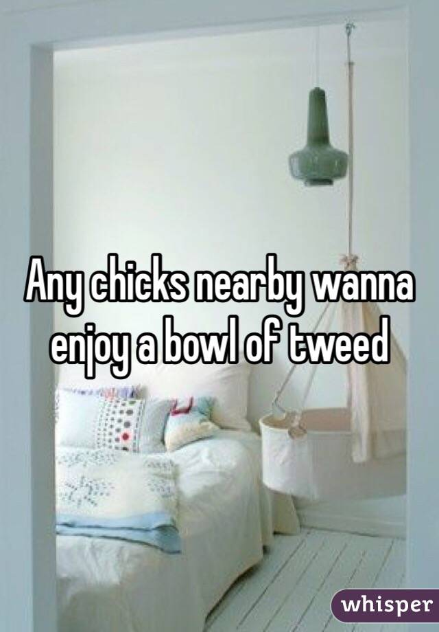 Any chicks nearby wanna enjoy a bowl of tweed