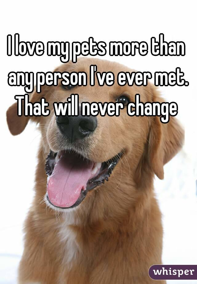 I love my pets more than any person I've ever met. That will never change