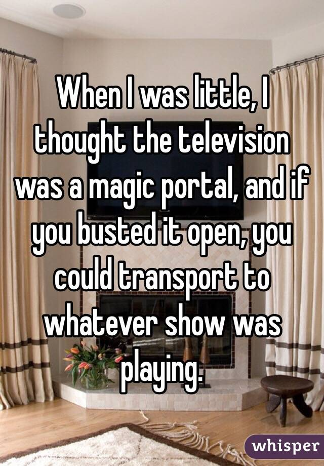When I was little, I thought the television was a magic portal, and if you busted it open, you could transport to whatever show was playing.