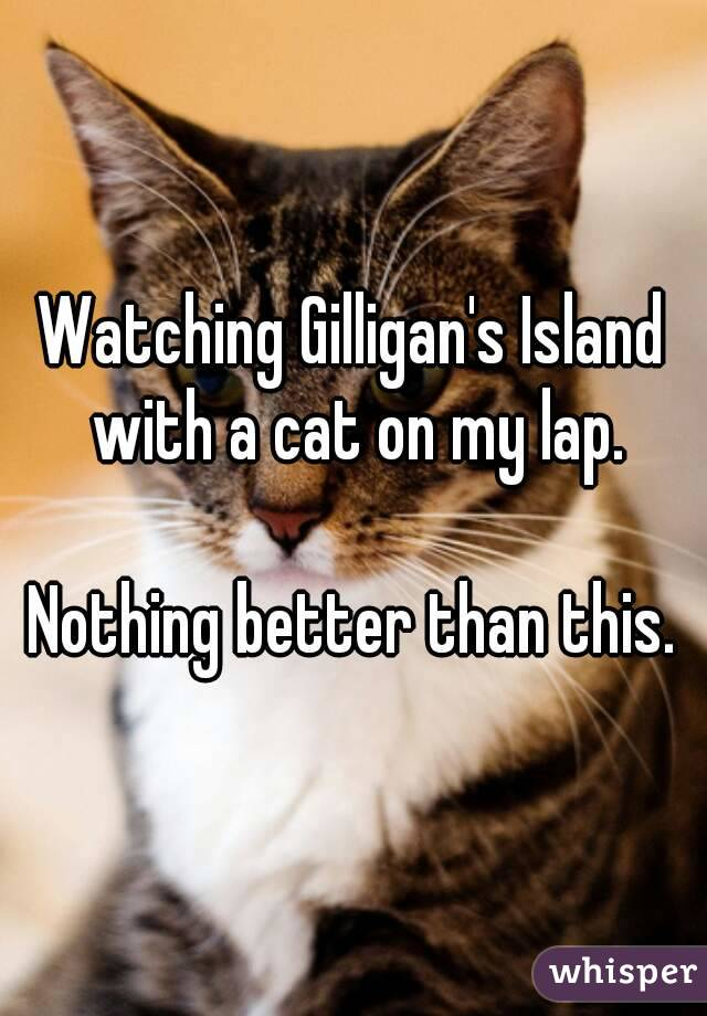 Watching Gilligan's Island with a cat on my lap.   Nothing better than this.