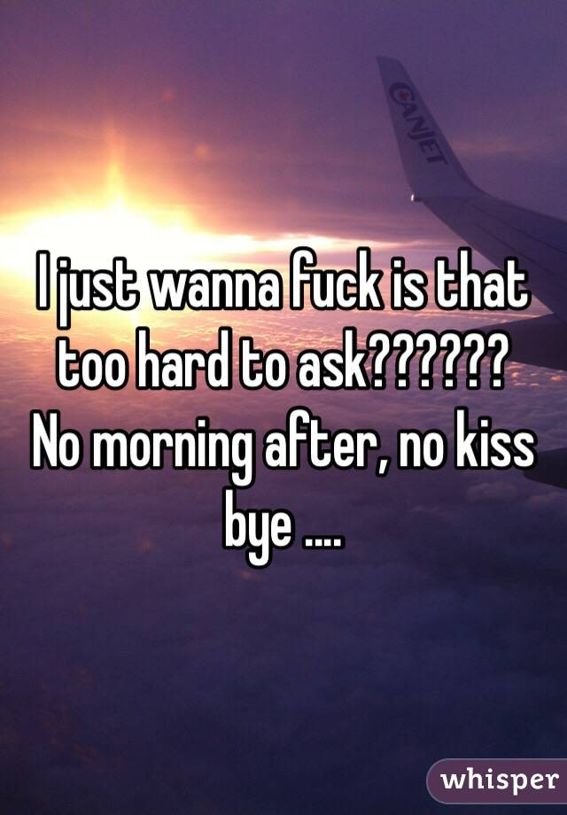 I just wanna fuck is that too hard to ask??????  No morning after, no kiss bye ....