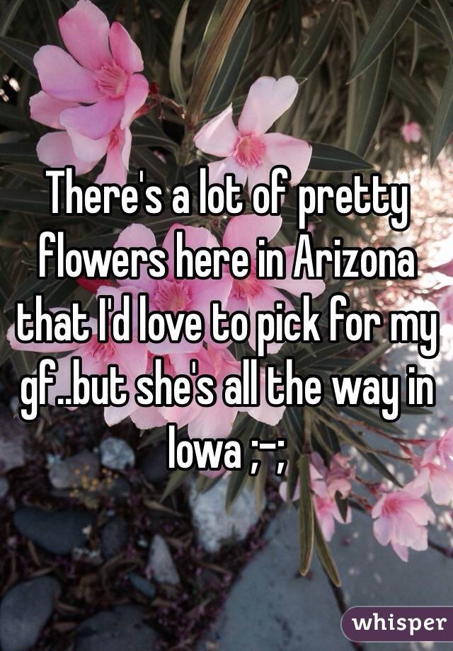 There's a lot of pretty flowers here in Arizona that I'd love to pick for my gf..but she's all the way in Iowa ;-;