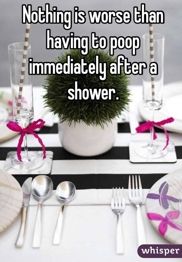 Nothing is worse than having to poop immediately after a shower.