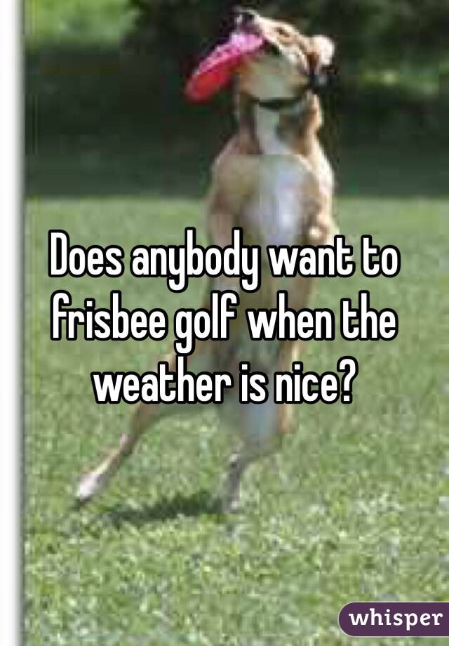 Does anybody want to frisbee golf when the weather is nice?