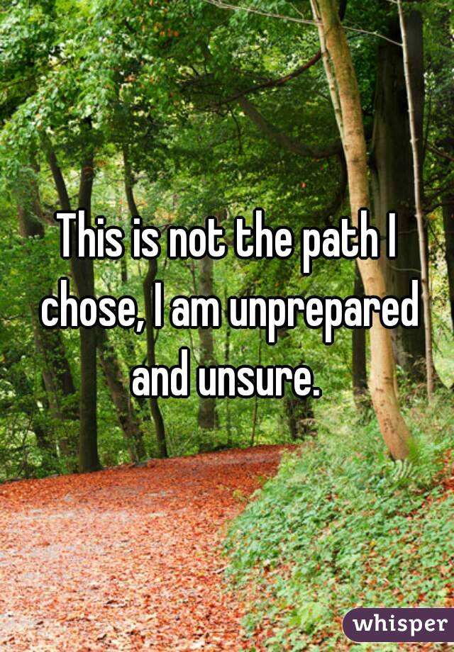 This is not the path I chose, I am unprepared and unsure.