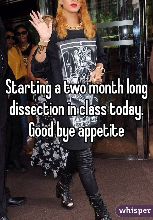 Starting a two month long dissection in class today. Good bye appetite
