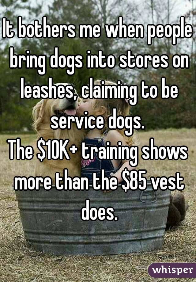 It bothers me when people bring dogs into stores on leashes, claiming to be service dogs.  The $10K+ training shows more than the $85 vest does.