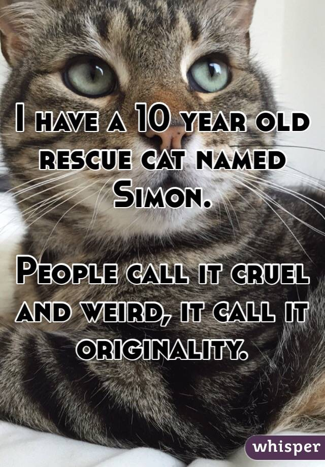 I have a 10 year old rescue cat named Simon.  People call it cruel and weird, it call it originality.