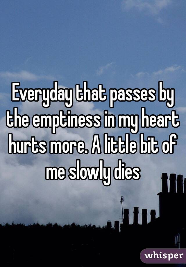 Everyday that passes by the emptiness in my heart hurts more. A little bit of me slowly dies
