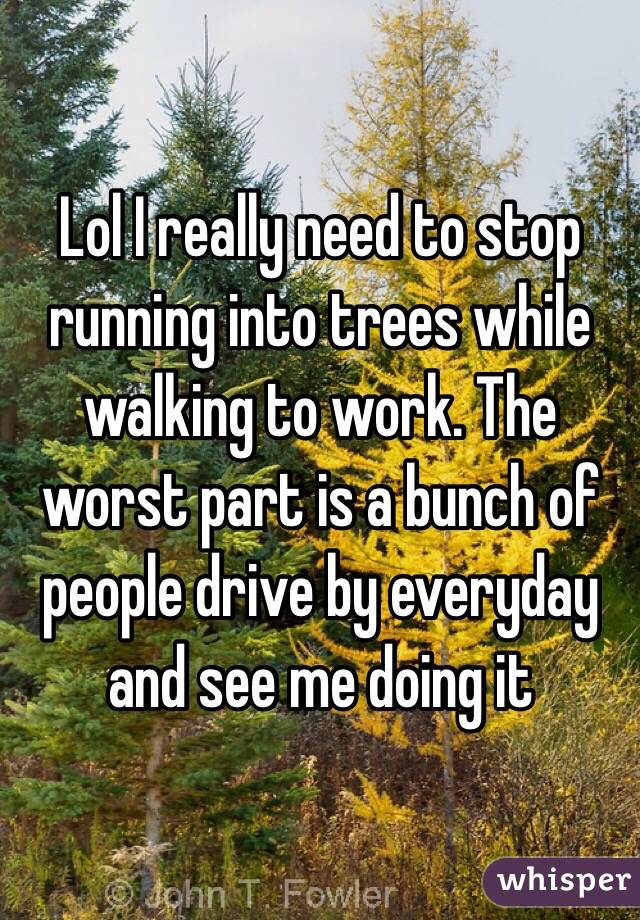 Lol I really need to stop running into trees while walking to work. The worst part is a bunch of people drive by everyday and see me doing it