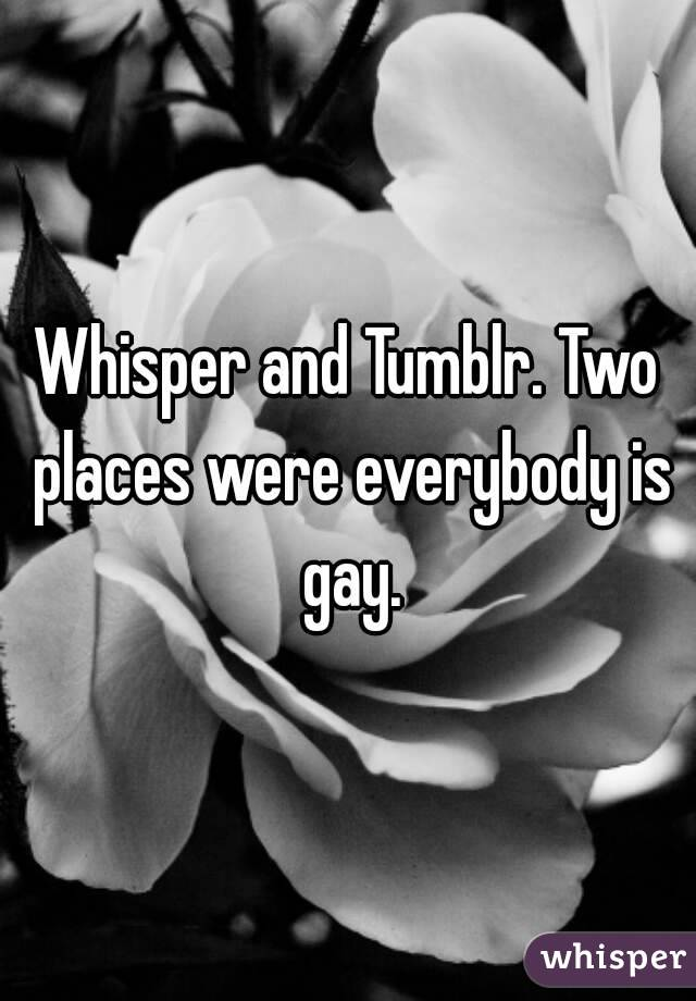 Whisper and Tumblr. Two places were everybody is gay.