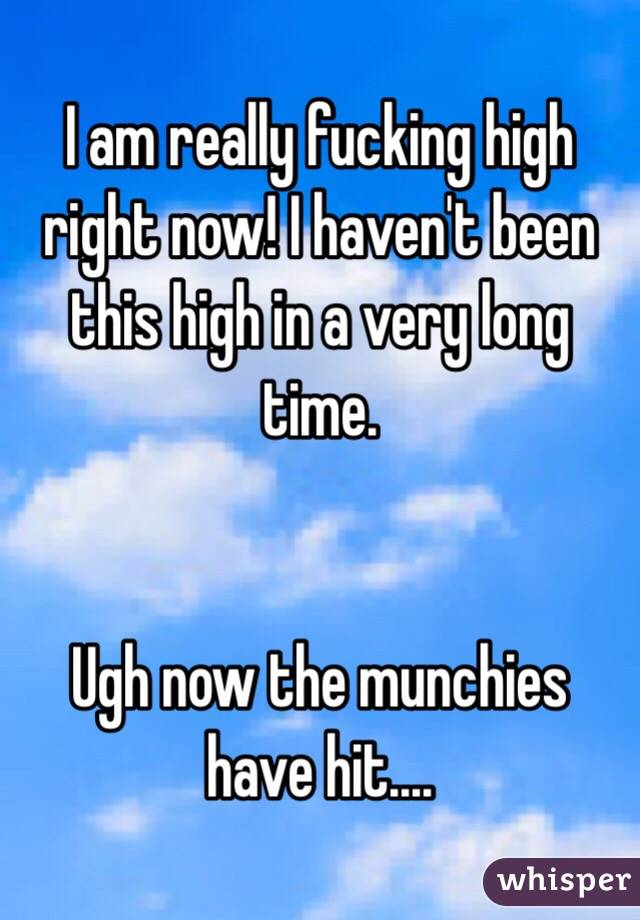 I am really fucking high right now! I haven't been this high in a very long time.      Ugh now the munchies have hit....