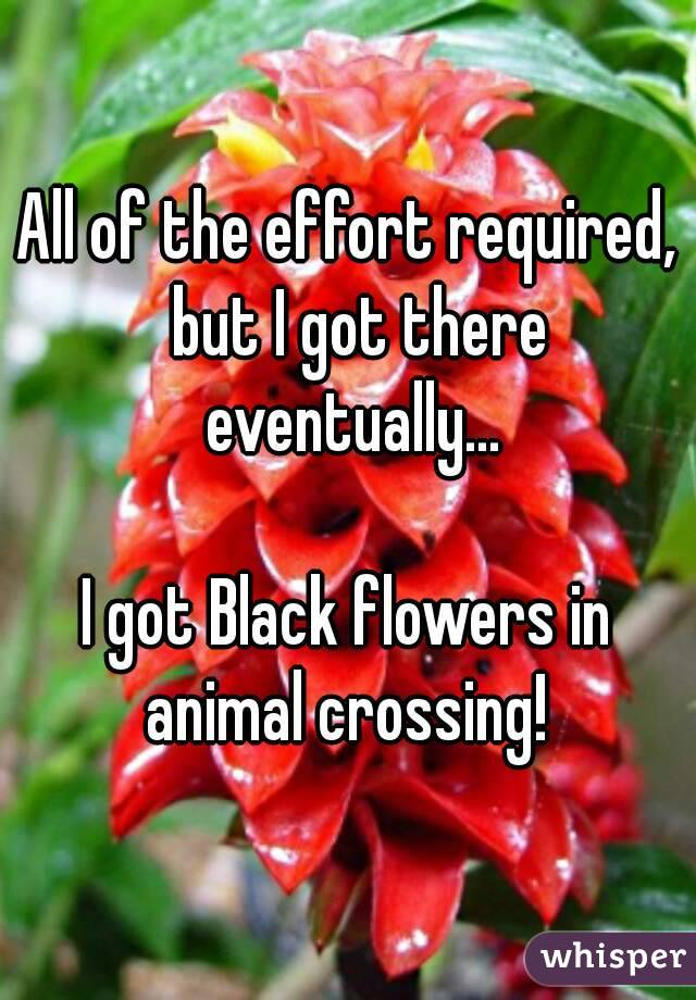 All of the effort required,  but I got there eventually...  I got Black flowers in animal crossing!