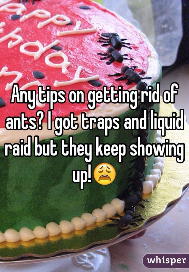 Any tips on getting rid of ants? I got traps and liquid raid but they keep showing up!😩