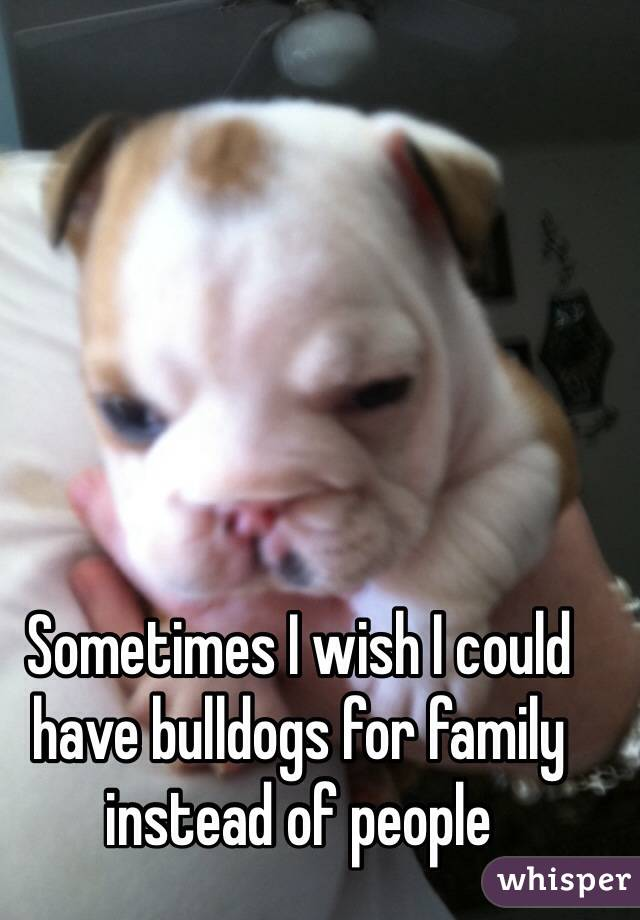 Sometimes I wish I could have bulldogs for family instead of people