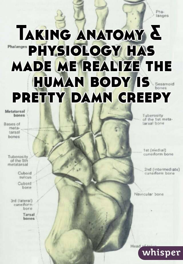 Taking anatomy & physiology has made me realize the human body is pretty damn creepy