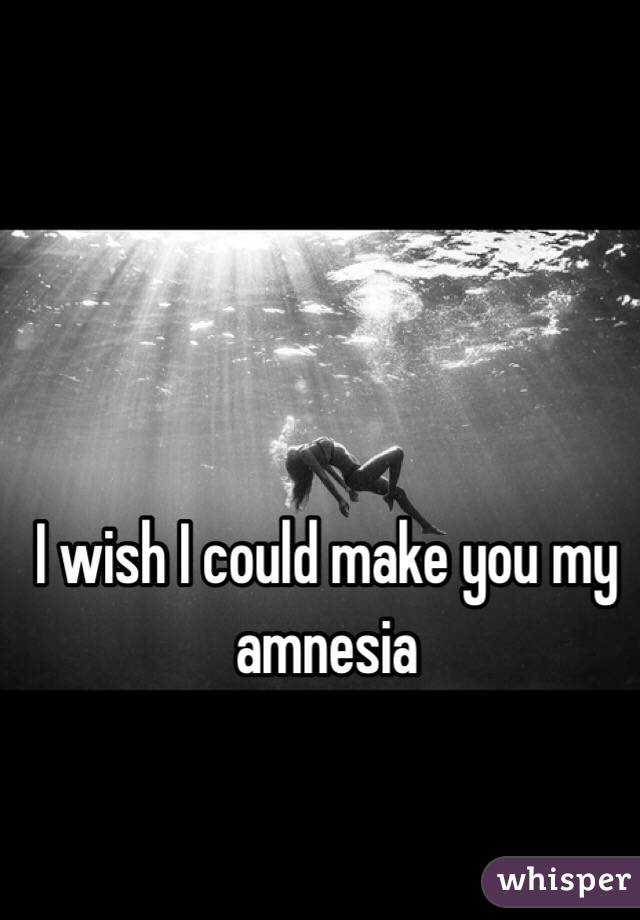 I wish I could make you my amnesia