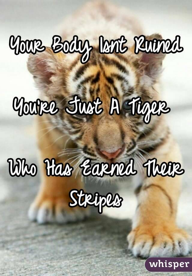 Your Body Isnt Ruined  You're Just A Tiger   Who Has Earned Their Stripes