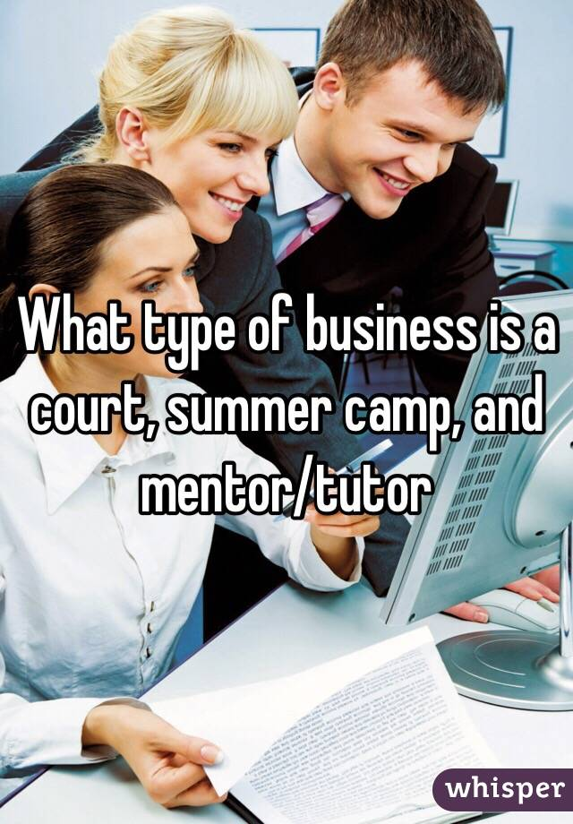 What type of business is a court, summer camp, and mentor/tutor