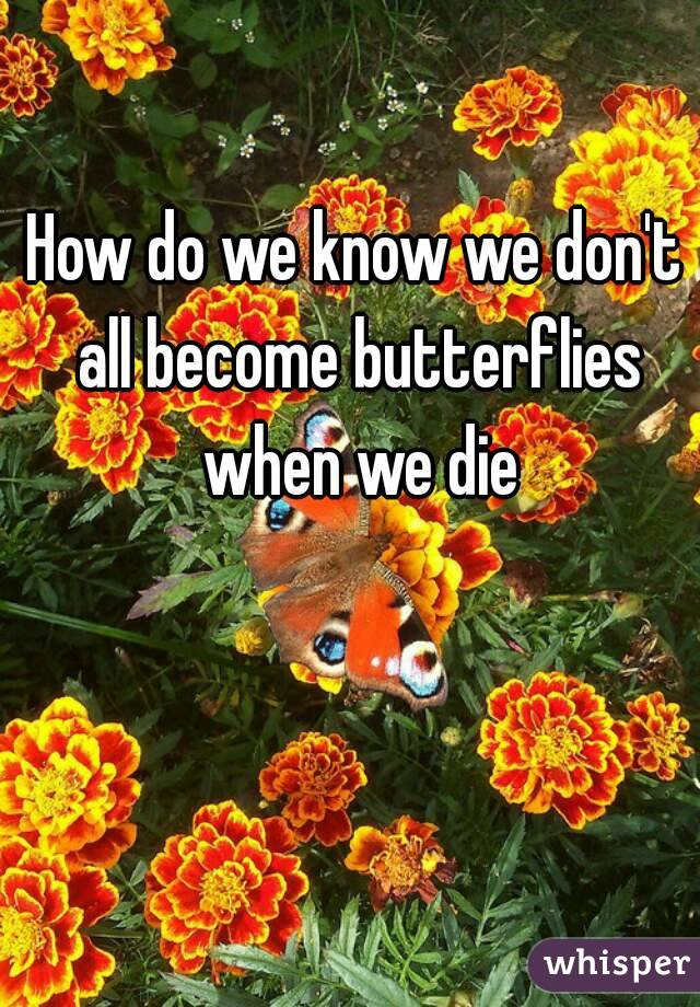 How do we know we don't all become butterflies when we die