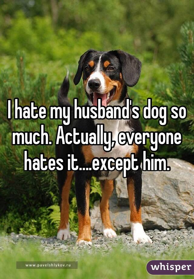 I hate my husband's dog so much. Actually, everyone hates it....except him.