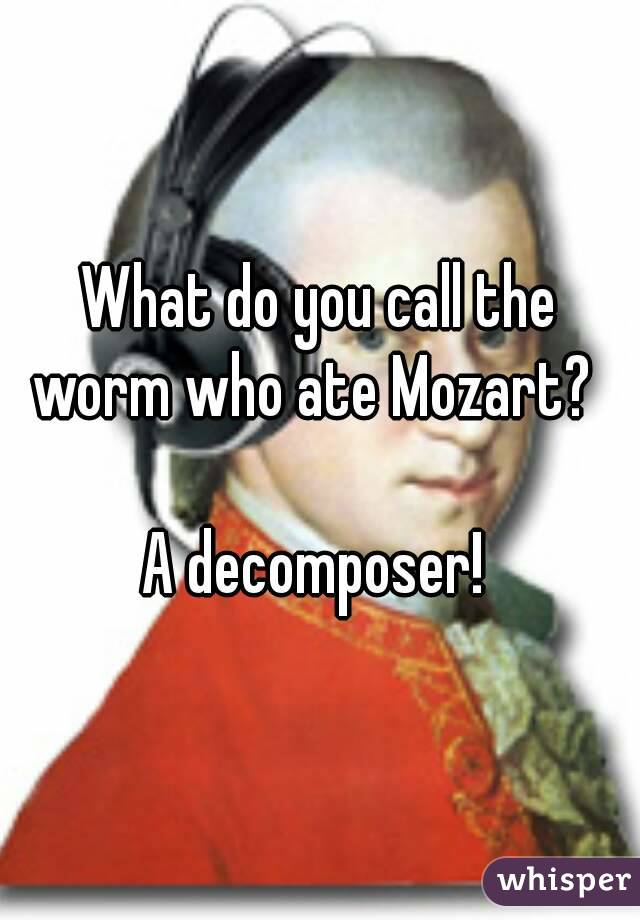 What do you call the worm who ate Mozart?    A decomposer!
