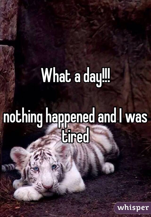 What a day!!!  nothing happened and I was tired