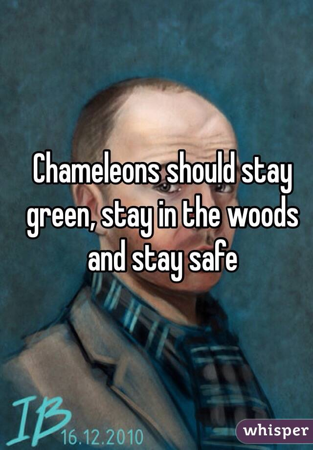 Chameleons should stay green, stay in the woods and stay safe