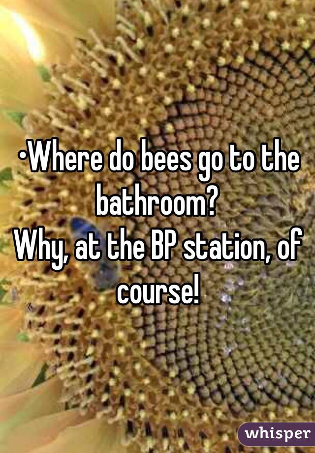 •Where do bees go to the bathroom? Why, at the BP station, of course!
