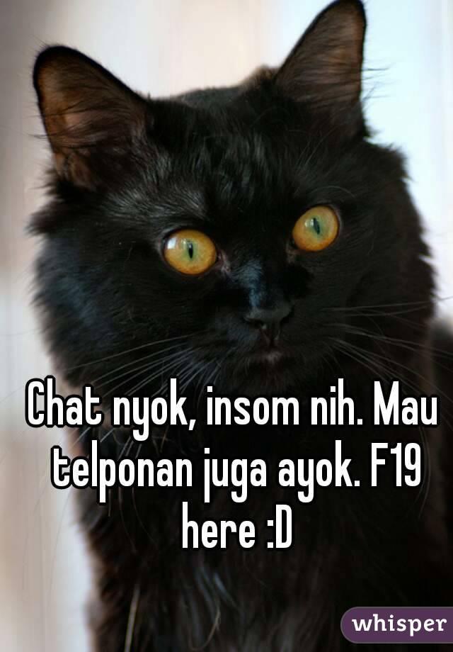 Chat nyok, insom nih. Mau telponan juga ayok. F19 here :D