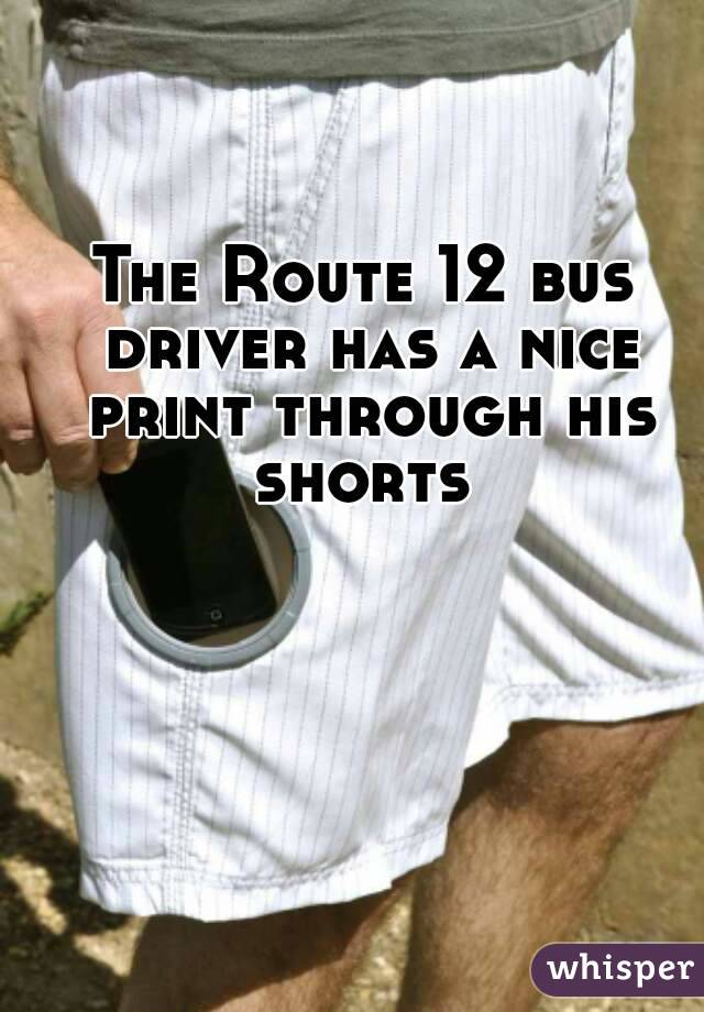 The Route 12 bus driver has a nice print through his shorts