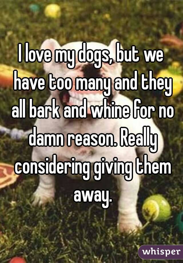 I love my dogs, but we have too many and they all bark and whine for no damn reason. Really considering giving them away.