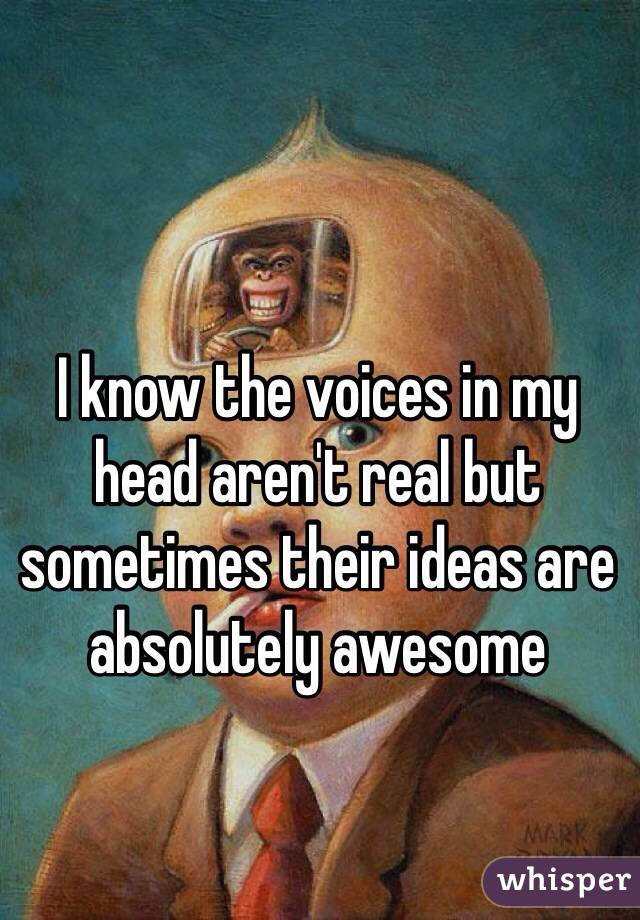 I know the voices in my head aren't real but sometimes their ideas are absolutely awesome