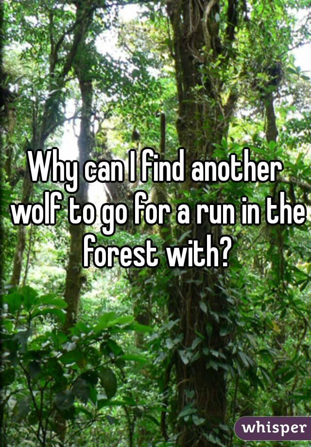 Why can I find another wolf to go for a run in the forest with?