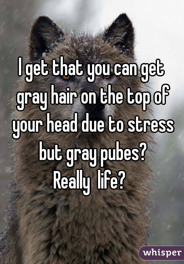 I get that you can get gray hair on the top of your head due to stress but gray pubes? Really  life?