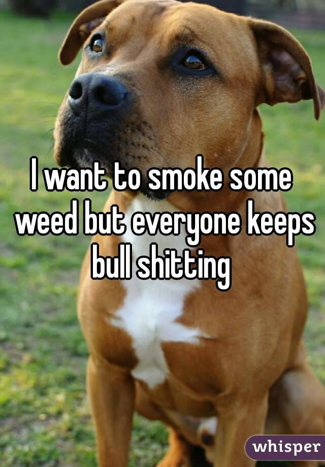 I want to smoke some weed but everyone keeps bull shitting