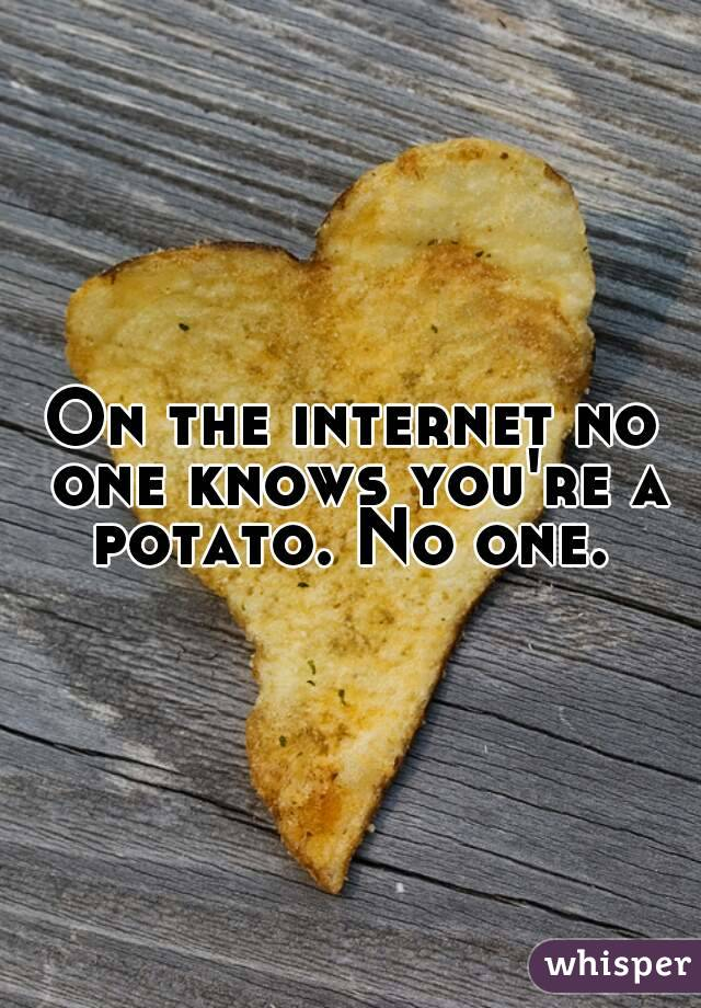 On the internet no one knows you're a potato. No one.