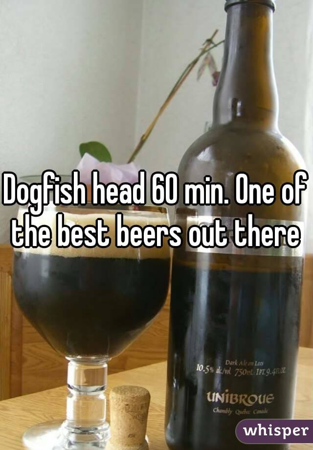 Dogfish head 60 min. One of the best beers out there