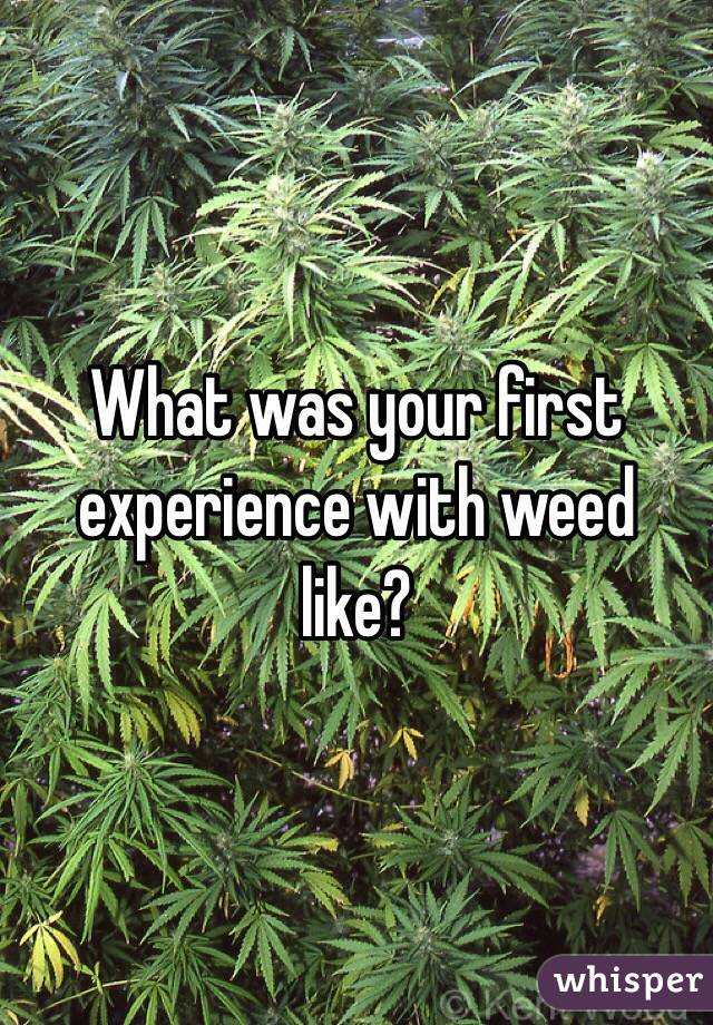 What was your first experience with weed like?