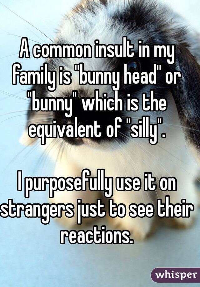 """A common insult in my family is """"bunny head"""" or """"bunny"""" which is the equivalent of """"silly"""".  I purposefully use it on strangers just to see their reactions."""
