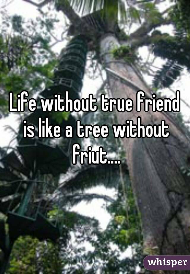Life without true friend is like a tree without friut....