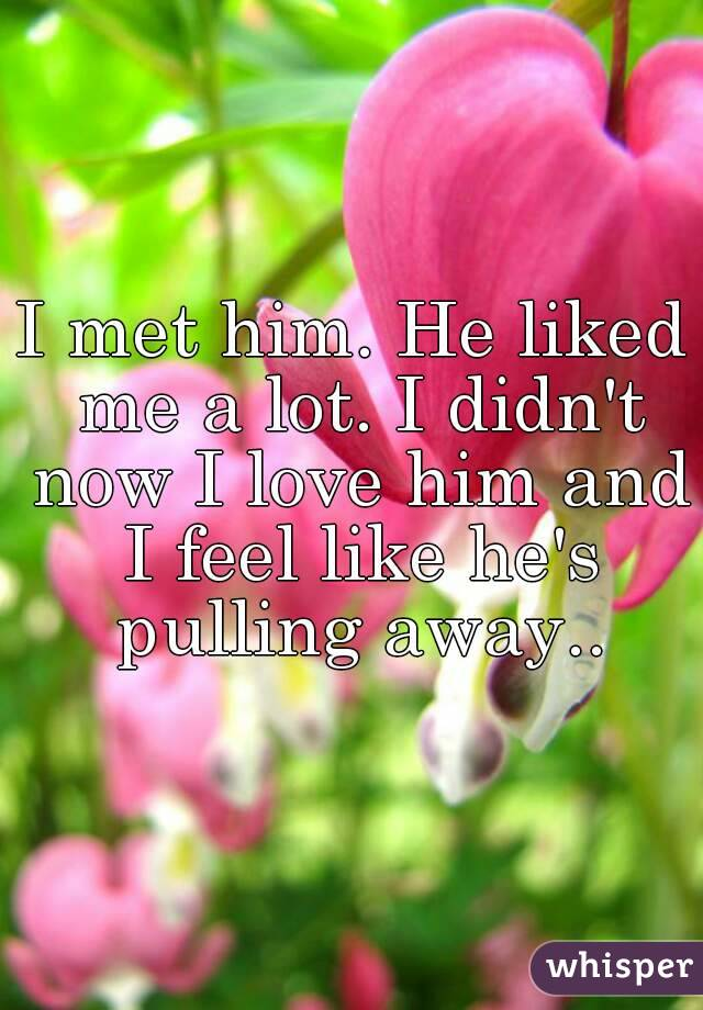 I met him. He liked me a lot. I didn't now I love him and I feel like he's pulling away..