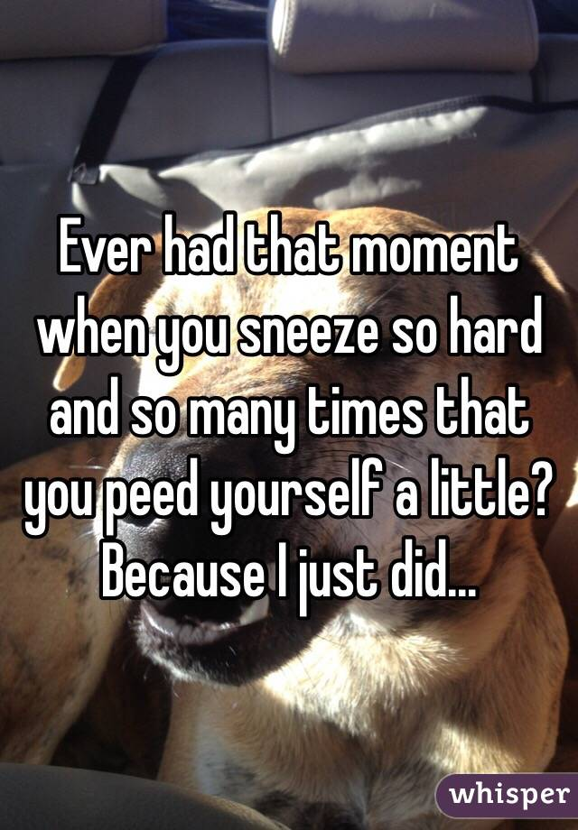Ever had that moment when you sneeze so hard and so many times that you peed yourself a little? Because I just did...